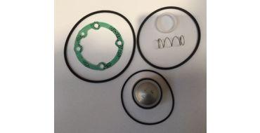 Intake Valve Kit 5.5-7.5kw Spinn BA51