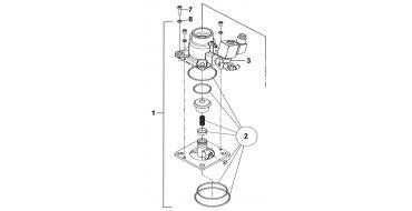 Intake Valve Kit Spinn-Genesis-Formula C55