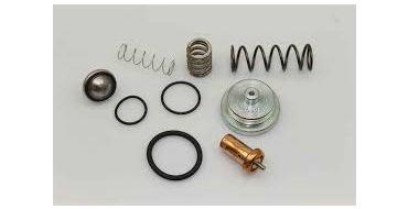 Thermostat-MPV C40-C55 Spinn-Genesis