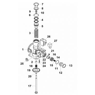 Intake Valve Kit 18.5-22kw Genesis C67-C77