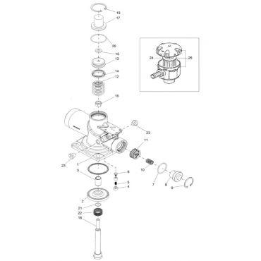 Intake Valve Kit Genesis-Formula C55* 5.5-11-C67, 15kw